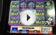 JUNGLE WILD Penny Video Slot Machine with FREE SPIN BONUS