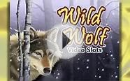 Wild Wolf Slots - Free Spins with Wild Wolf Video Slots.mp4